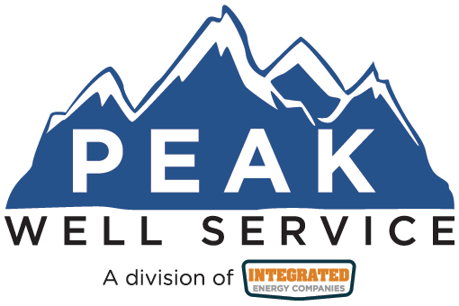 Peak-well-service-logo